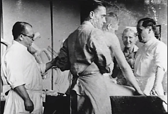 アウシュヴィッツ 人体 実験