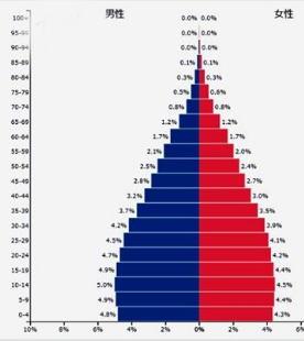 インド 人口 ピラミッド