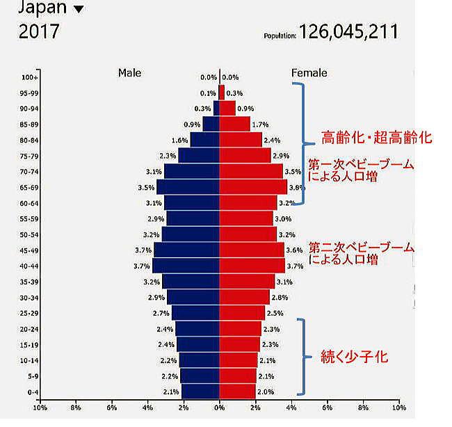 人口 ピラミッド