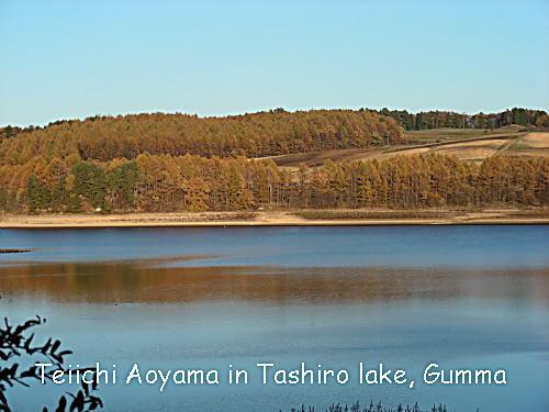 上州高原の晩秋短訪 ①田代湖とカラマツ林 青山貞一